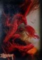 Протекторы (кармашки)  с рисунком Драконы 50шт